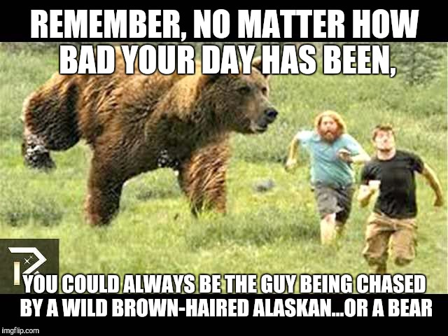 REMEMBER, NO MATTER HOW BAD YOUR DAY HAS BEEN, YOU COULD ALWAYS BE THE GUY BEING CHASED BY A WILD BROWN-HAIRED ALASKAN...OR A BEAR | image tagged in alaskan  bear | made w/ Imgflip meme maker