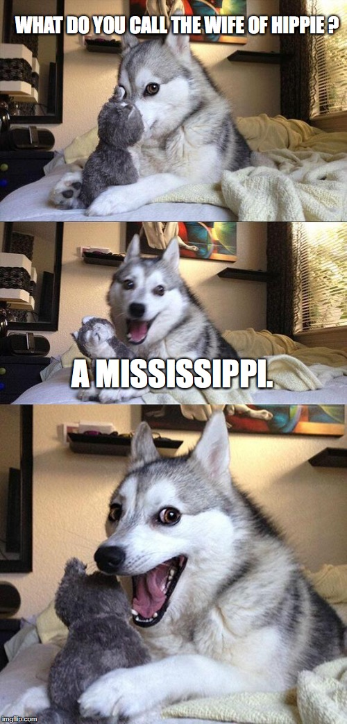 Bad Pun Dog Meme | WHAT DO YOU CALL THE WIFE OF HIPPIE ? A MISSISSIPPI. | image tagged in memes,bad pun dog | made w/ Imgflip meme maker
