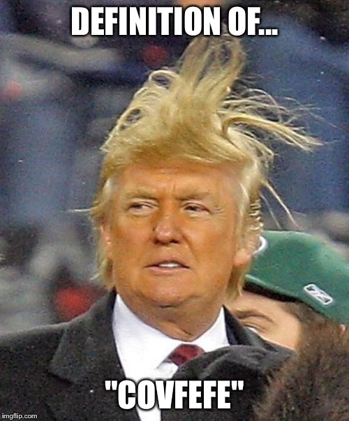 "Donald Trumph hair |  DEFINITION OF... ""COVFEFE"" 
