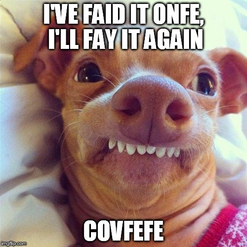 I'VE FAID IT ONFE, I'LL FAY IT AGAIN COVFEFE | image tagged in covfefe | made w/ Imgflip meme maker