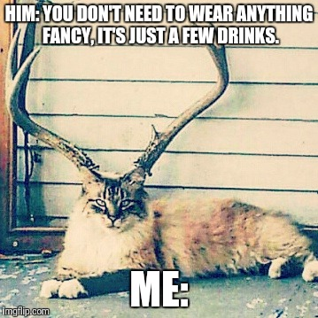 Slay allllll day, err day. | HIM: YOU DON'T NEED TO WEAR ANYTHING FANCY, IT'S JUST A FEW DRINKS. ME: | image tagged in reactions,cats | made w/ Imgflip meme maker