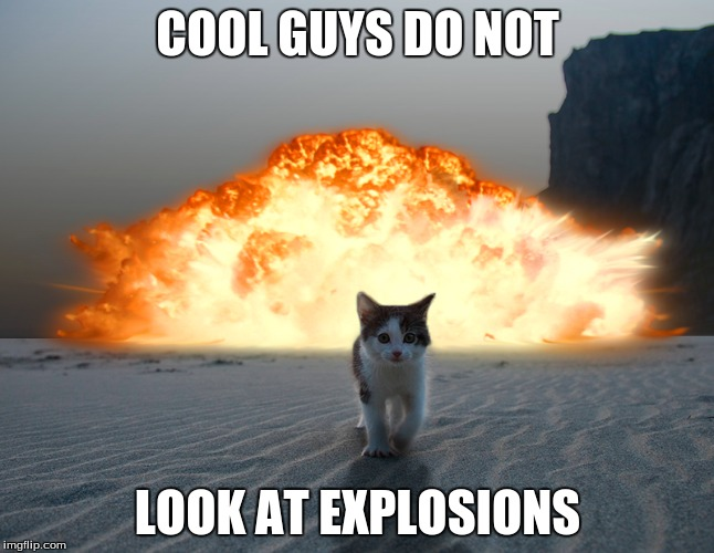 COOL GUYS DO NOT LOOK AT EXPLOSIONS | image tagged in funny animals | made w/ Imgflip meme maker