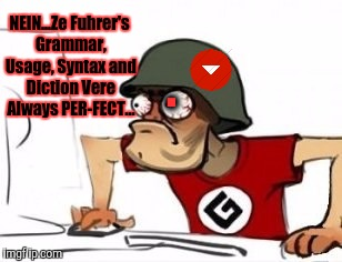 . NEIN...Ze Fuhrer's Grammar, Usage, Syntax and Diction Vere Always PER-FECT... | made w/ Imgflip meme maker