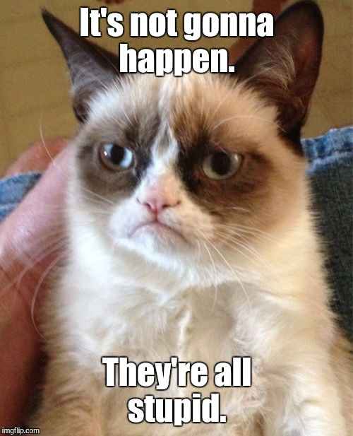 Grumpy Cat Meme | It's not gonna happen. They're all stupid. | image tagged in memes,grumpy cat | made w/ Imgflip meme maker