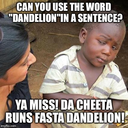 "Third world English lesson  | CAN YOU USE THE WORD  ""DANDELION""IN A SENTENCE? YA MISS! DA CHEETA RUNS FASTA DANDELION! 