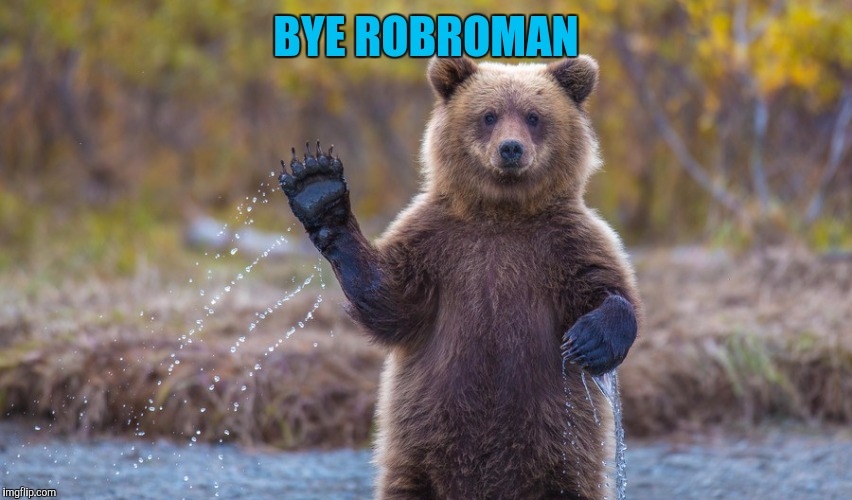 HI garry | BYE ROBROMAN | image tagged in hi garry | made w/ Imgflip meme maker