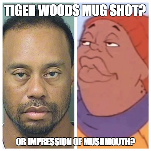 Tiger Woods Impressionist | TIGER WOODS MUG SHOT? OR IMPRESSION OF MUSHMOUTH? | image tagged in tiger woods mug shot,tiger woods,fat albert,bill cosby,golf,dui | made w/ Imgflip meme maker