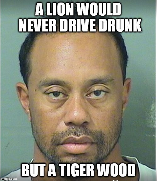 A LION WOULD NEVER DRIVE DRUNK BUT A TIGER WOOD | image tagged in tiger woods mug shot | made w/ Imgflip meme maker
