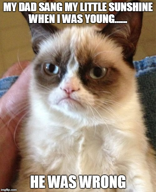 Grumpy Cat Meme | MY DAD SANG MY LITTLE SUNSHINE WHEN I WAS YOUNG...... HE WAS WRONG | image tagged in memes,grumpy cat | made w/ Imgflip meme maker