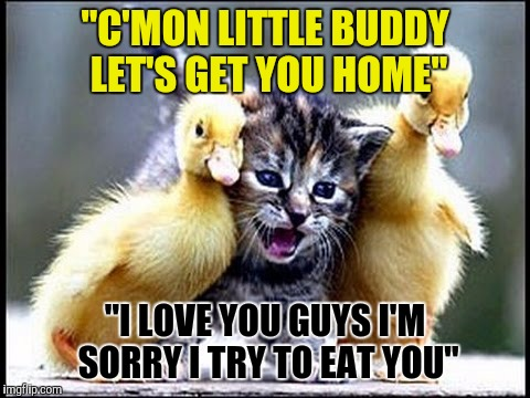 "When you drink too much but your buddies have your back  |  ""C'MON LITTLE BUDDY LET'S GET YOU HOME""; ""I LOVE YOU GUYS I'M SORRY I TRY TO EAT YOU"" 