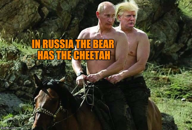 IN RUSSIA THE BEAR HAS THE CHEETAH | made w/ Imgflip meme maker
