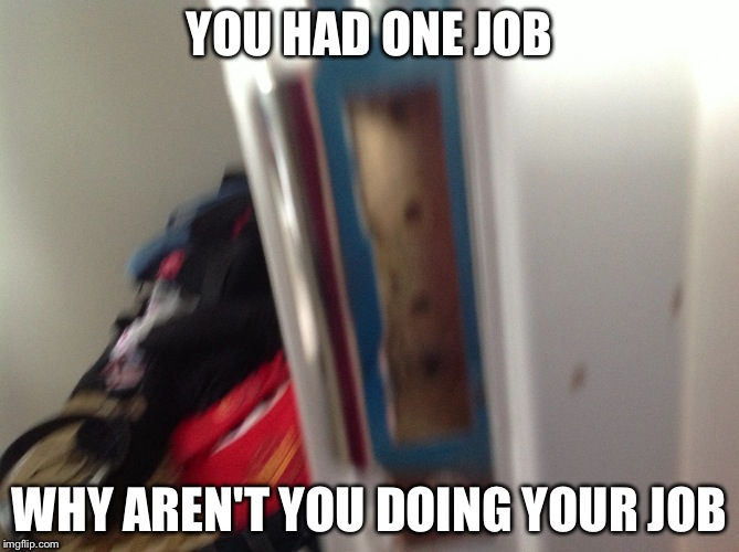 YOU HAD ONE JOB WHY AREN'T YOU DOING YOUR JOB | image tagged in you had one job | made w/ Imgflip meme maker
