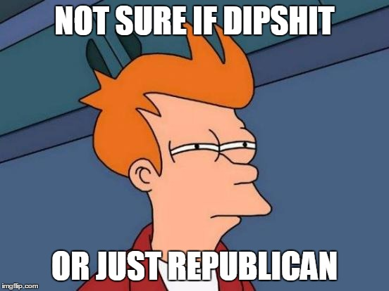 Futurama Fry Meme | NOT SURE IF DIPSHIT OR JUST REPUBLICAN | image tagged in memes,futurama fry | made w/ Imgflip meme maker