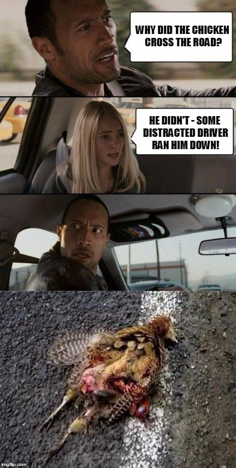 there goes the night on the town | WHY DID THE CHICKEN CROSS THE ROAD? HE DIDN'T - SOME DISTRACTED DRIVER RAN HIM DOWN! | image tagged in the rock driving - why did the chicken cross the road,the rock driving,memes,why did the chicken cross the road | made w/ Imgflip meme maker