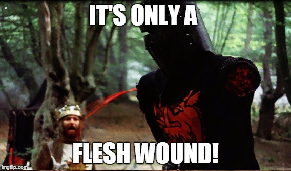 IT'S ONLY A FLESH WOUND! | made w/ Imgflip meme maker
