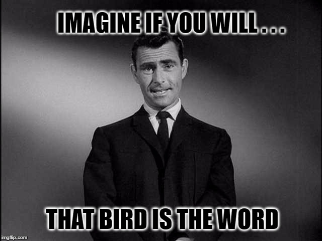 rod serling twilight zone | IMAGINE IF YOU WILL . . . THAT BIRD IS THE WORD | image tagged in rod serling twilight zone,rod serling imagine if you will,birds,birdman,birds and bees | made w/ Imgflip meme maker