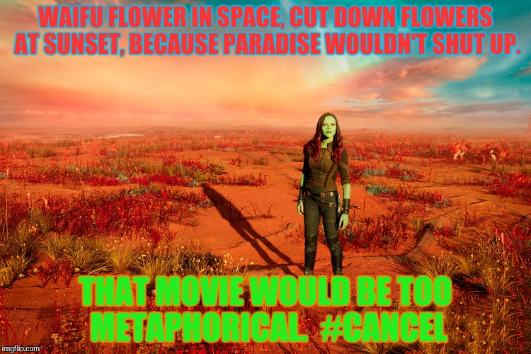 WAIFU FLOWER IN SPACE, CUT DOWN FLOWERS AT SUNSET, BECAUSE PARADISE WOULDN'T SHUT UP. THAT MOVIE WOULD BE TOO METAPHORICAL.  #CANCEL | made w/ Imgflip meme maker
