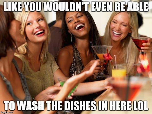 girls laughing | LIKE YOU WOULDN'T EVEN BE ABLE TO WASH THE DISHES IN HERE LOL | image tagged in girls laughing,memes | made w/ Imgflip meme maker