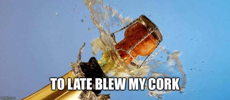 TO LATE BLEW MY CORK | made w/ Imgflip meme maker