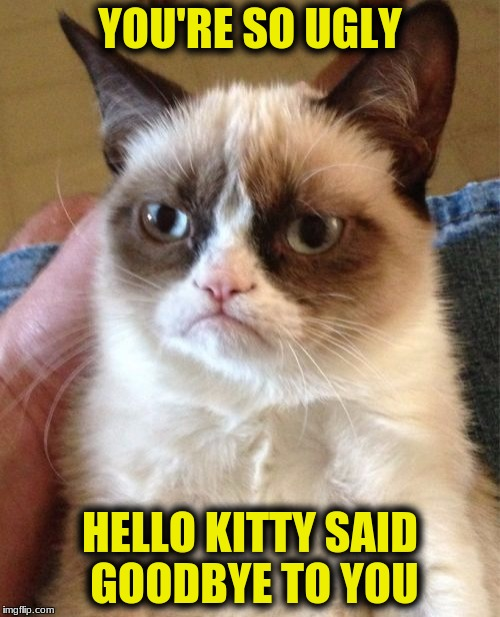 Grumpy Cat Meme | YOU'RE SO UGLY HELLO KITTY SAID GOODBYE TO YOU | image tagged in memes,grumpy cat | made w/ Imgflip meme maker