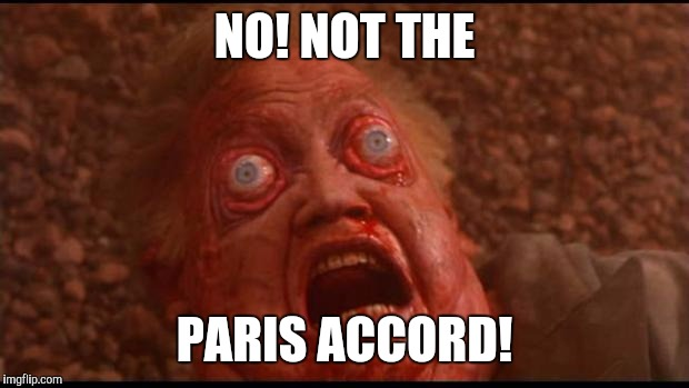Total recall mars face | NO! NOT THE PARIS ACCORD! | image tagged in total recall mars face | made w/ Imgflip meme maker