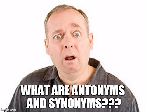 WHAT ARE ANTONYMS AND SYNONYMS??? | made w/ Imgflip meme maker