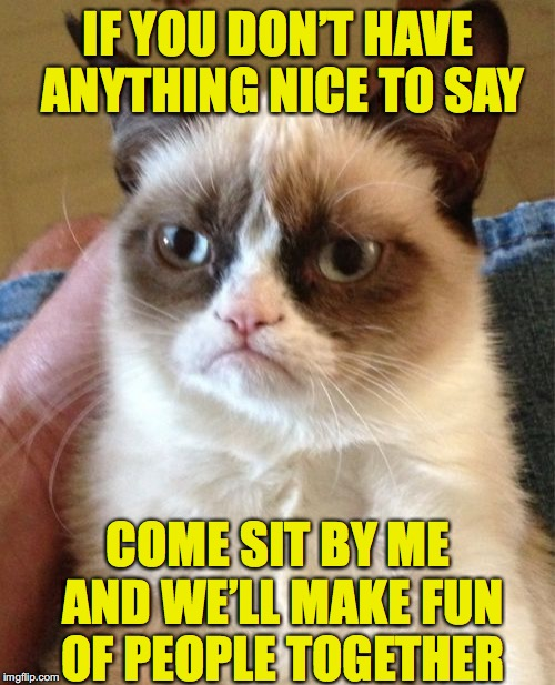 Grumpy Cat Meme | IF YOU DON'T HAVE ANYTHING NICE TO SAY COME SIT BY ME AND WE'LL MAKE FUN OF PEOPLE TOGETHER | image tagged in memes,grumpy cat,saying | made w/ Imgflip meme maker