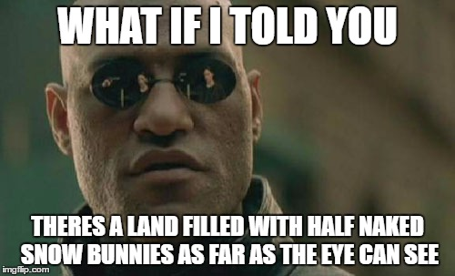 Convincing your black friend to go to a Music Festival | WHAT IF I TOLD YOU THERES A LAND FILLED WITH HALF NAKED SNOW BUNNIES AS FAR AS THE EYE CAN SEE | image tagged in memes,festivals,music,matrix morpheus | made w/ Imgflip meme maker
