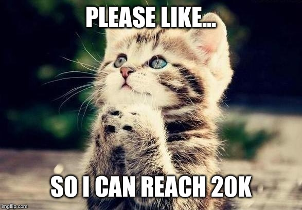 PLEASE LIKE... SO I CAN REACH 20K | image tagged in cat begging | made w/ Imgflip meme maker