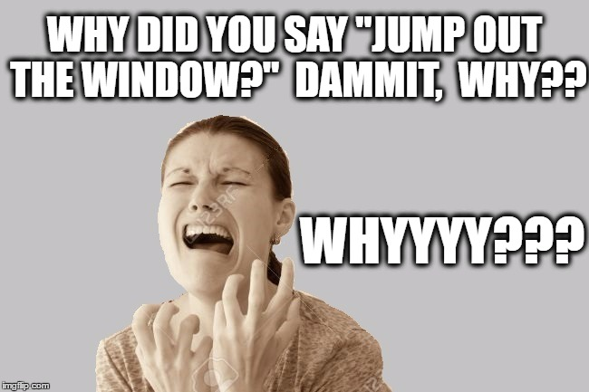 "WHY DID YOU SAY ""JUMP OUT THE WINDOW?""  DAMMIT,  WHY?? WHYYYY??? 