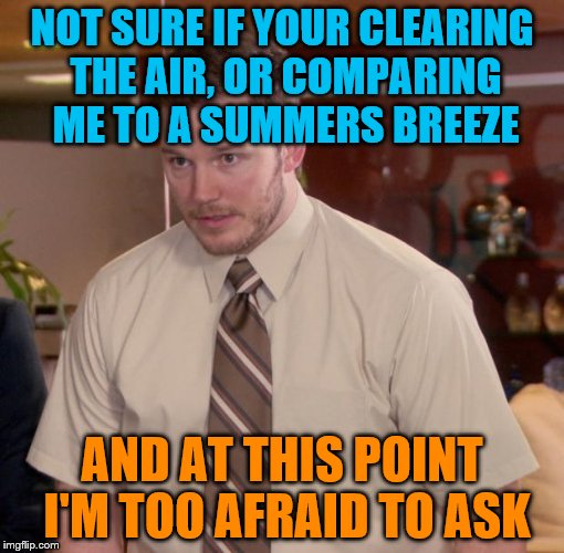 NOT SURE IF YOUR CLEARING THE AIR, OR COMPARING ME TO A SUMMERS BREEZE AND AT THIS POINT I'M TOO AFRAID TO ASK | made w/ Imgflip meme maker