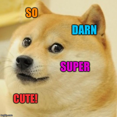 Doge Meme | SO DARN SUPER CUTE! | image tagged in memes,doge | made w/ Imgflip meme maker