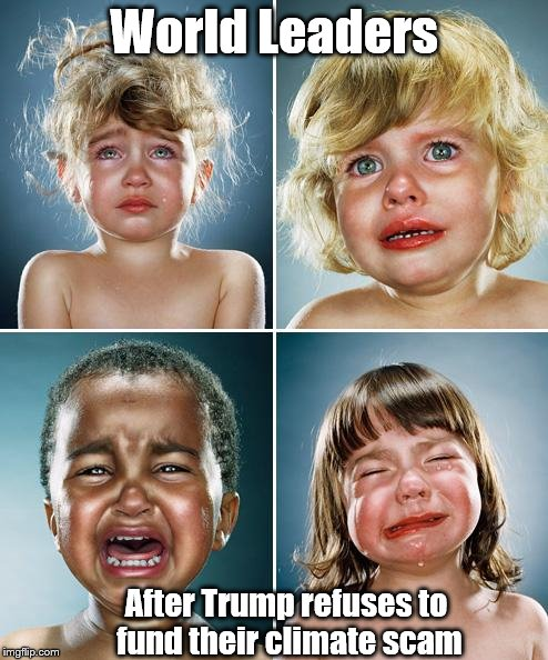 Crying kids | World Leaders After Trump refuses to fund their climate scam | image tagged in crying kids | made w/ Imgflip meme maker