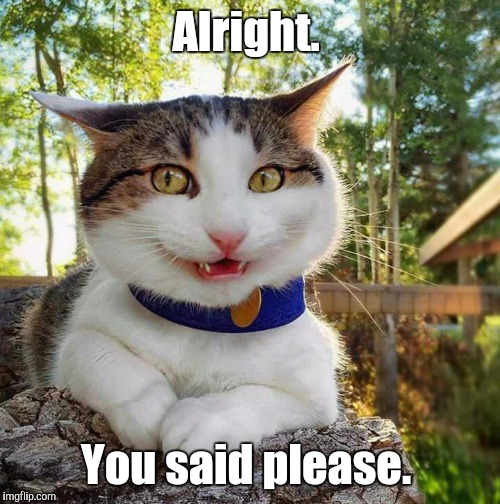 Smiling Cat | Alright. You said please. | image tagged in smiling cat | made w/ Imgflip meme maker