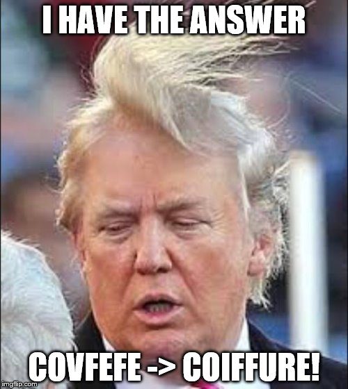 I know what covfefe means! | I HAVE THE ANSWER COVFEFE -> COIFFURE! | image tagged in trump hair,covfefe | made w/ Imgflip meme maker