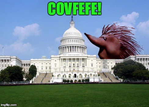 Alright, so I broke down and made one | COVFEFE! | image tagged in covfefe,monty python,i apologize | made w/ Imgflip meme maker