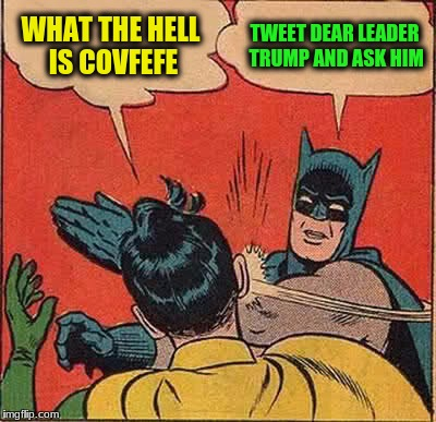 Batman Slapping Robin Meme | WHAT THE HELL IS COVFEFE TWEET DEAR LEADER TRUMP AND ASK HIM | image tagged in memes,batman slapping robin | made w/ Imgflip meme maker