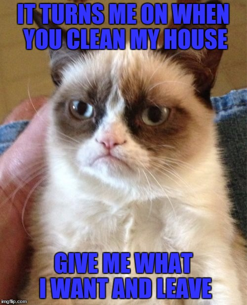Grumpy Cat Meme | IT TURNS ME ON WHEN YOU CLEAN MY HOUSE GIVE ME WHAT I WANT AND LEAVE | image tagged in memes,grumpy cat | made w/ Imgflip meme maker