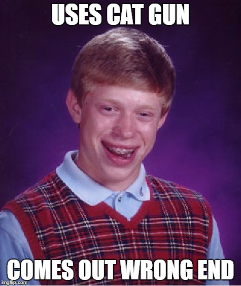 Bad Luck Brian Meme | USES CAT GUN COMES OUT WRONG END | image tagged in memes,bad luck brian | made w/ Imgflip meme maker