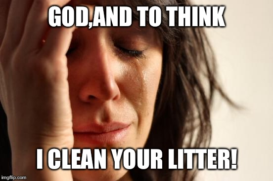 First World Problems Meme | GOD,AND TO THINK I CLEAN YOUR LITTER! | image tagged in memes,first world problems | made w/ Imgflip meme maker