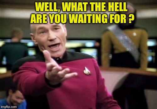 Picard Wtf Meme | WELL, WHAT THE HELL ARE YOU WAITING FOR ? | image tagged in memes,picard wtf | made w/ Imgflip meme maker