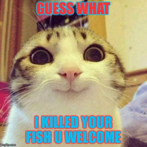 Smiling Cat Meme | GUESS WHAT I KILLED YOUR FISH U WELCOME | image tagged in memes,smiling cat | made w/ Imgflip meme maker