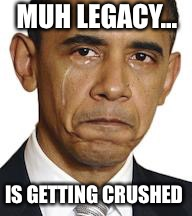 Time heals all wounds  | MUH LEGACY... IS GETTING CRUSHED | image tagged in obama crying,paris climate deal,trump,adidos | made w/ Imgflip meme maker