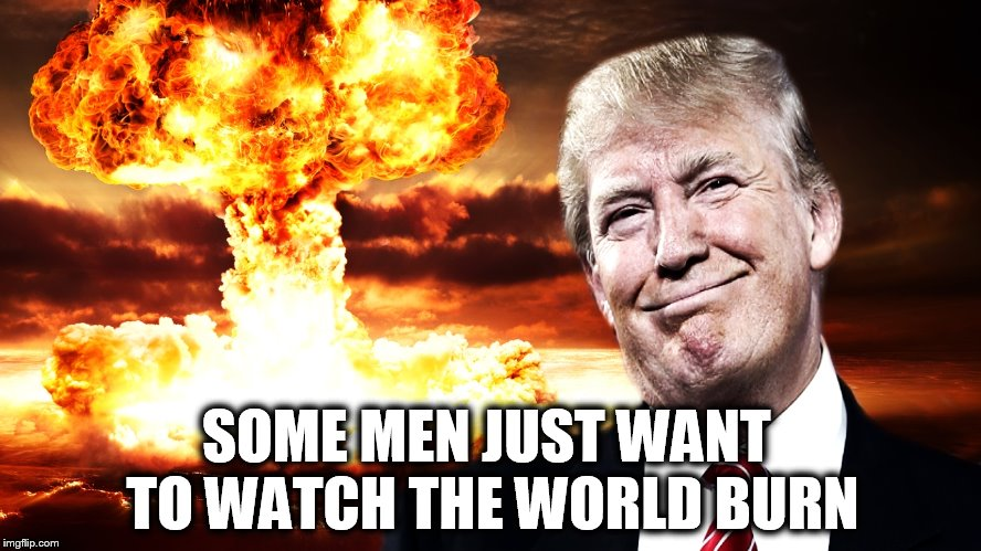 Image result for trump destroys world