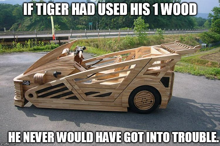 IF TIGER HAD USED HIS 1 WOOD HE NEVER WOULD HAVE GOT INTO TROUBLE. | made w/ Imgflip meme maker