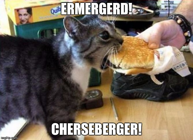 ERMERGERD! CHERSEBERGER! | image tagged in cheeseburger,cats,fast food | made w/ Imgflip meme maker