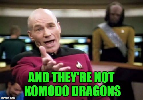 Picard Wtf Meme | AND THEY'RE NOT KOMODO DRAGONS | image tagged in memes,picard wtf | made w/ Imgflip meme maker