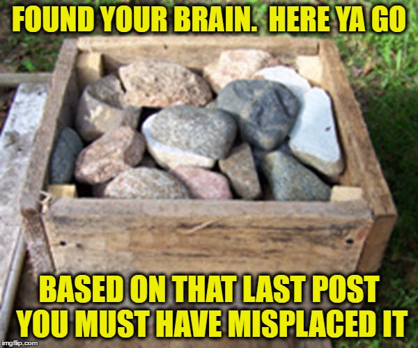 FOUND YOUR BRAIN.  HERE YA GO BASED ON THAT LAST POST YOU MUST HAVE MISPLACED IT | image tagged in debate,post,retards | made w/ Imgflip meme maker