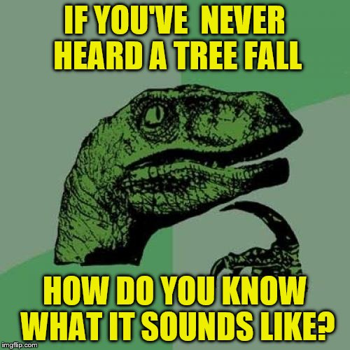 Philosoraptor Meme | IF YOU'VE  NEVER HEARD A TREE FALL HOW DO YOU KNOW WHAT IT SOUNDS LIKE? | image tagged in memes,philosoraptor | made w/ Imgflip meme maker