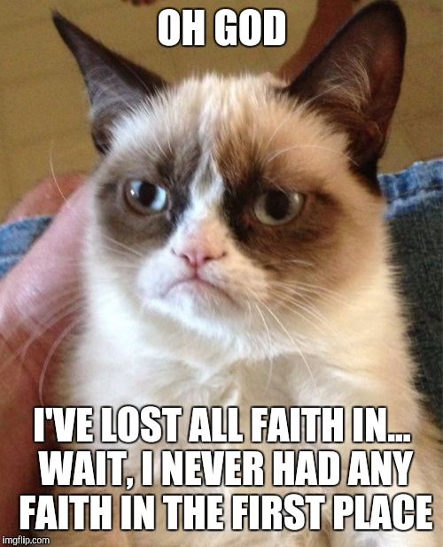 Grumpy Cat Meme | OH GOD I'VE LOST ALL FAITH IN... WAIT, I NEVER HAD ANY FAITH IN THE FIRST PLACE | image tagged in memes,grumpy cat | made w/ Imgflip meme maker